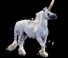 STOCK - Precut Unicorn 2 by fillyrox