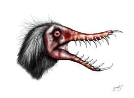 Rhamphorhynchus muensteri by MALvit