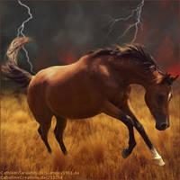 Horse Avatar ~ Calamity by LargestBirdie