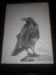 Raven inktober 15 by somechick73