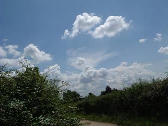 Cloud based Freedom by alloymental