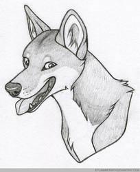 Adrastos the Dingo by FlannMoriath