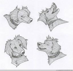 Headshot Expressions: Luna by FlannMoriath
