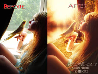 Before After 38 by FP-Digital-Art
