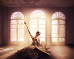 Cigno by FP-Digital-Art