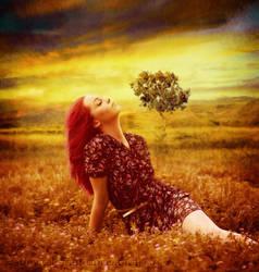 Warm Meadow by FP-Digital-Art