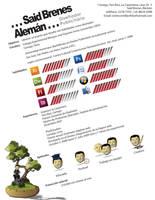 Curriculum resume by toromuco