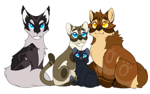 Hawkfrost, Sasha, Tadpole, and Mothwing by Cosmic-rust