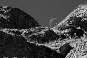 Moon Rocks by organicvision
