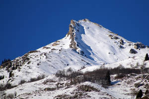 A Crested Butte by organicvision