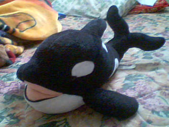 My Orca plushie by Dragons-white