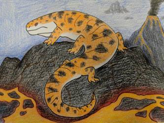 Volcanic Salamander by Deli-Sammich