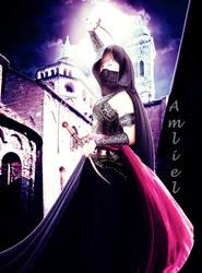 The Assassin by Amliel