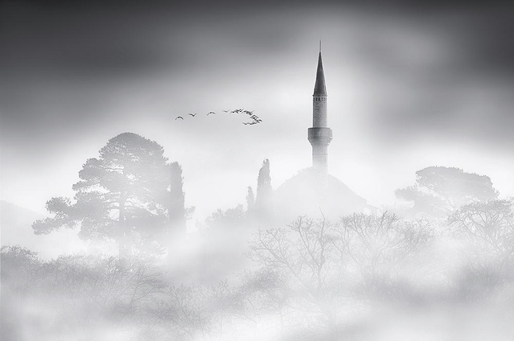 Beyond the Mist by justeline