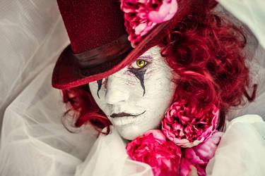 circus by ZitaDeLphoto