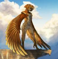 Harpy by Denizundan17
