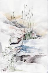 Sketch - Soft Gras by Aquabienie