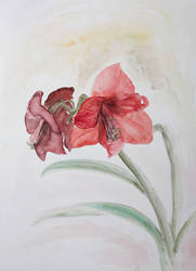 Flower Sketch by Aquabienie