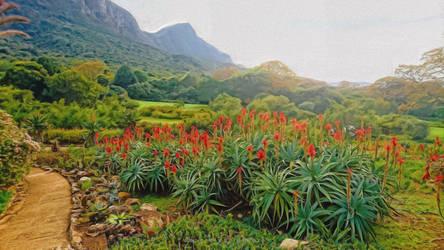 Kirstenbosch Gardens  by rgmendes