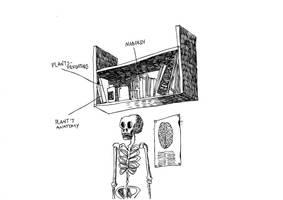 the bookshelf by RumourTheNoir