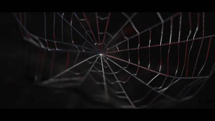 Spiderman Web - 3D Artwork by Waysh