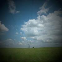 pylon and tree by YCSarah