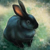 Black Bunny SpeedPaint by GoldenDruid