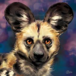 Wild Dog Portrait - SpeedPaint by GoldenDruid
