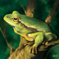 Frog on Branch - SpeedPaint by GoldenDruid