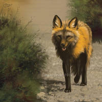 Fox Trot - SpeedPaint by GoldenDruid