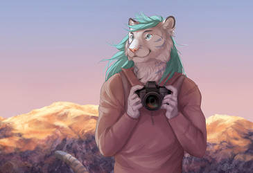 The Photographer WIP1 by GoldenDruid