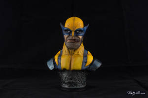 [GK painting #01] Wolverine bust - 001 by DasArt