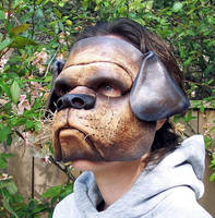 Bulldog Leather Mask by TomBanwell