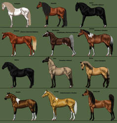 The Roster 3/12 by MagicWindsStables