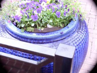 Purple flowers in blue pot by Star121