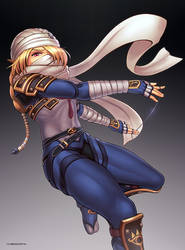 Sheik (Ultimate) by hybridmink