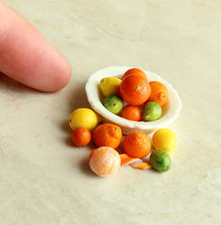 1:12 Scale Citrus by fairchildart