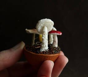 Day 4: Mushroom by fairchildart