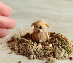 Decay in Miniature: Abandoned Teddy by fairchildart