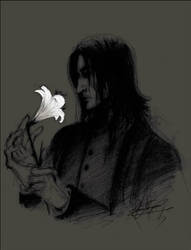The Prince's Tale by Rgveta
