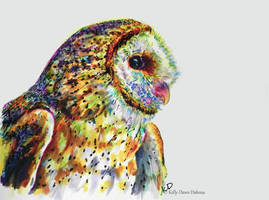 Barn Owl by kDdabous