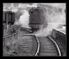 Train by xxFireKittyxx