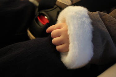 Child's Hand in Fur by VictorCS