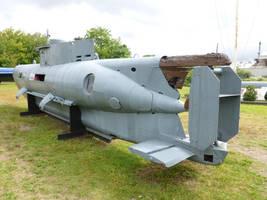 Reply, Seehund midget submarine think, that