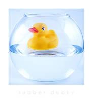 Rubber Ducky by rannug