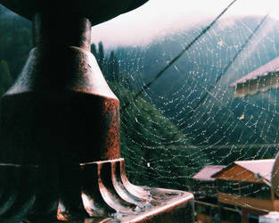 spiderweb  by Filanca