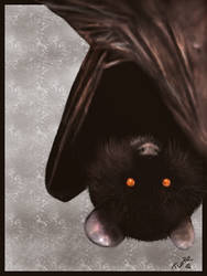Bat by Turtlebuzz
