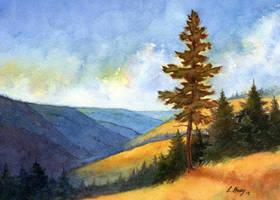 Whitman Overlook II by tuningmyheart
