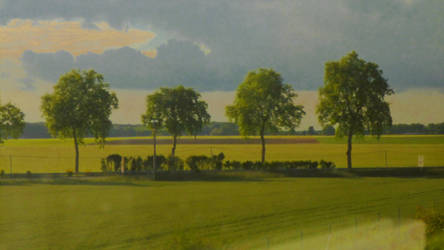 Quatre Arbres by nicolapin