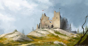 Castle Ruins by cury